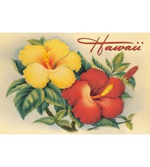 Magnet Hawaiian Hibiscus  8x5cm