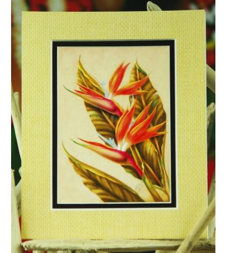 Cadre Déco Bird of Paradise Fibre Naturelle 20X25 cm