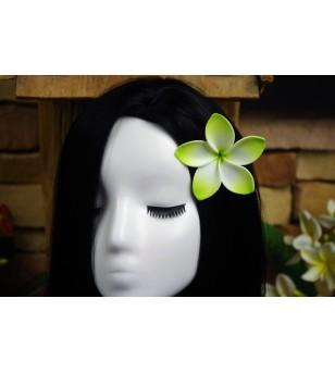 Fleur D'oreille Frangipanier 7.6cm