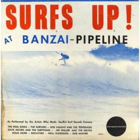 Affiche Poster Surfs Up Banzai Pipeline Papier Kraft Format A3 42*30
