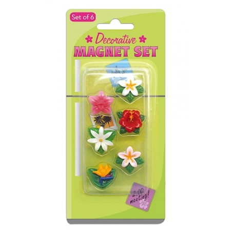Set 6 Mini Magnet Fleurs Luau Plastique