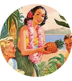 Magnet Décapsuleur Pineapple Hawaii