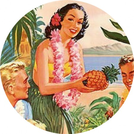 Magnet Décapsuleur Pineapple Hawaii