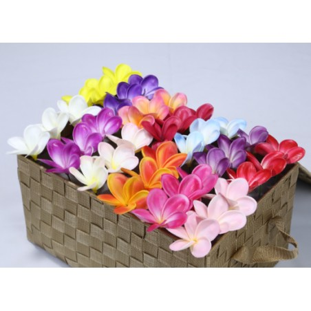 Lot 10 Fleurs D'oreille Frangipanier 5 modèles Couleurs Blanc Jaune, Rouge, Rose, Bleu, Orange  Plastique Polyester 9*13