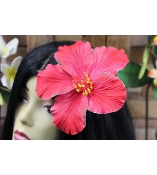 Pince Poara, Composition Florale