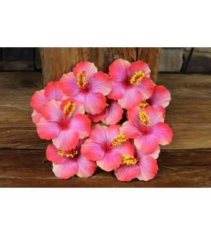 Lot 10 Fleurs D'oreille Hibiscus 9.5 cm