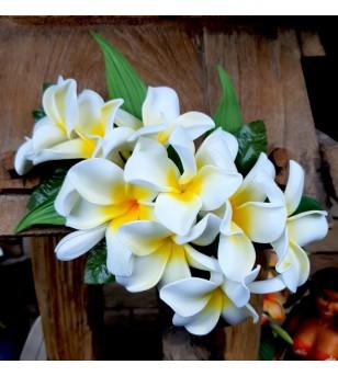 Poara Fleurs Frangipaniers